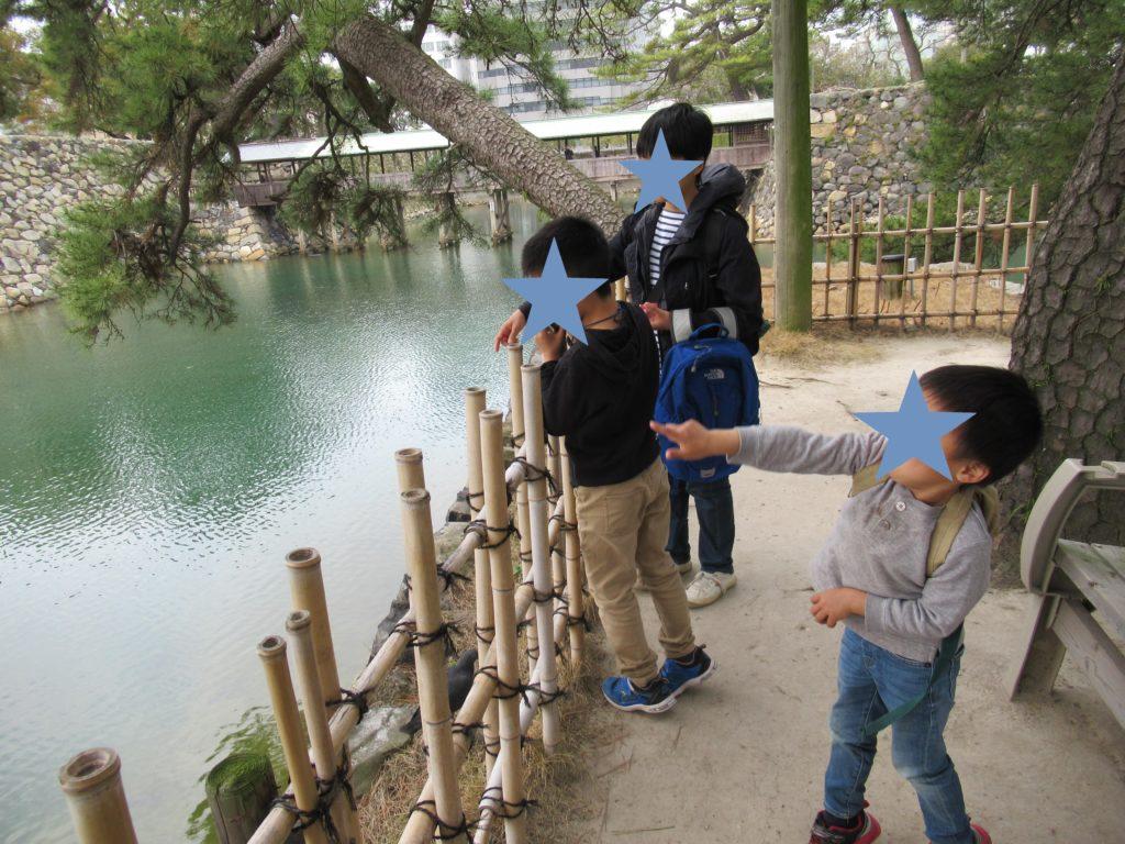 高松城で鯛に餌やり