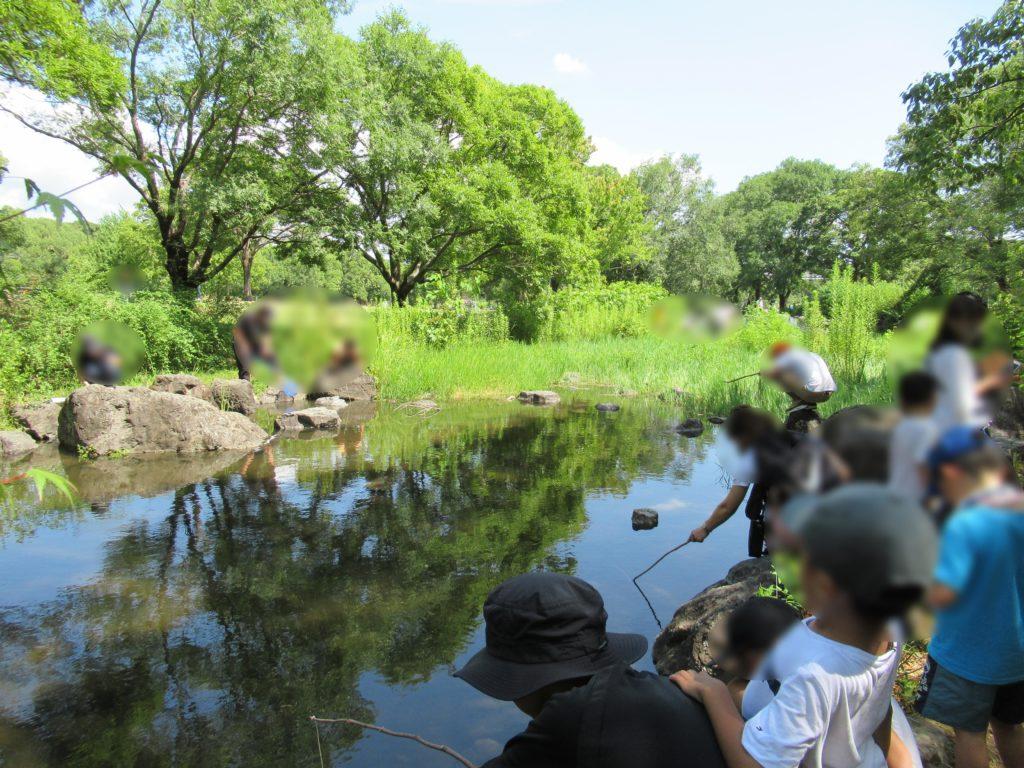 万博記念公園でザリガニ釣り