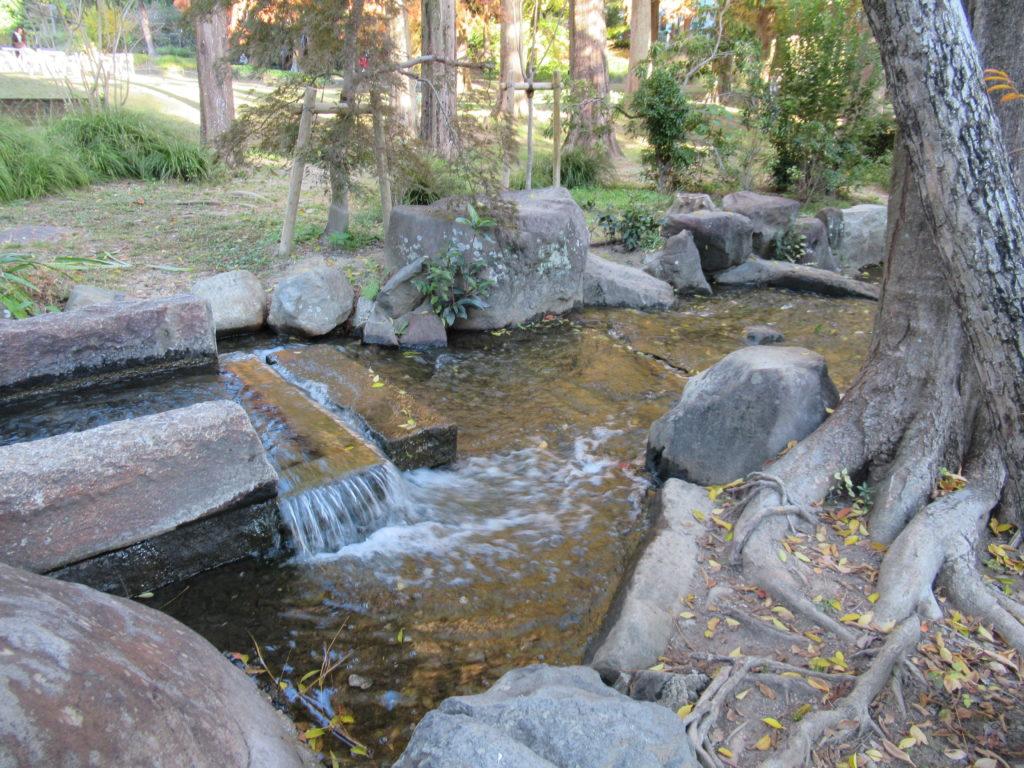 服部緑地 都市緑化植物園 水が流れている