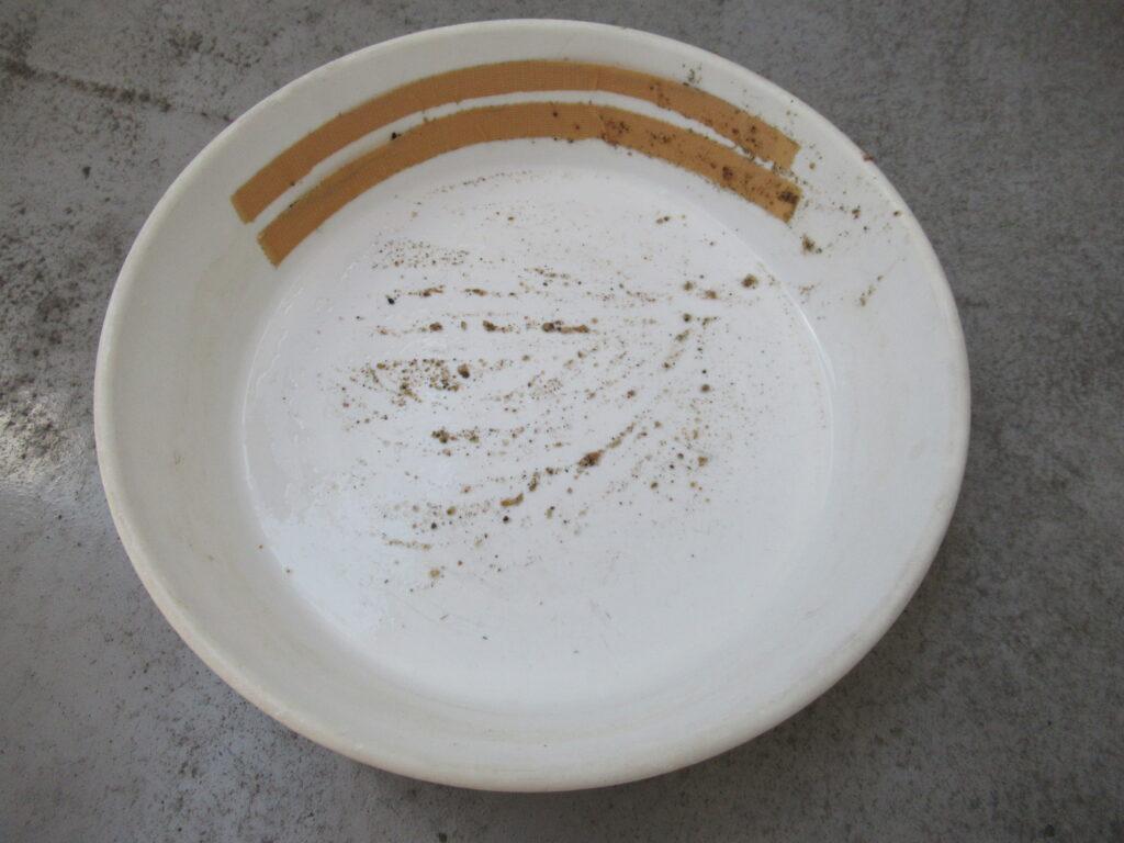 パンニング皿 100均 自作